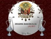 www.zeugmabakir.com